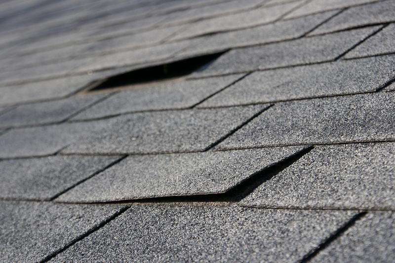 shingle roof problems